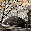 Vintage Bridge In South Park by Luther Fine Art