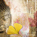 Vintage Buddha And Ginkgo by Delphimages Photo Creations