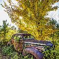 Vintage Car by Debra and Dave Vanderlaan