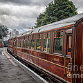 Vintage Carriages by Adrian Evans