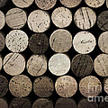 Vintage Corks by Jane Rix