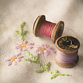 Vintage Cotton Reels by Jan Bickerton
