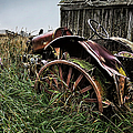 Vintage Farm Tractor Color by Theresa Tahara