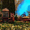 Vintage Fordson Tractor by Bill Cannon
