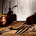 Vintage Gardening Tools by Olivier Le Queinec