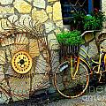 Antique Store Hay Rake And Bicycle by Pamela Smale Williams