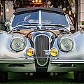 Vintage Jaguar -0924c by Jill Reger
