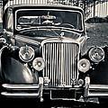Vintage Jaguar 1950s by Eti Reid