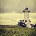 Vintage Lighthouse Pei by Edward Fielding