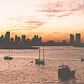 Vintage Miami Skyline by Phil Perkins