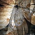 Vintage Nude  by Andrea Kollo