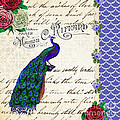 Vintage Peacock Collage by Li Or