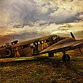 Vintage Plane by Evie Carrier