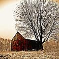 Vintage Red by Kevin D Davis
