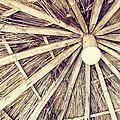 Vintage Reed Roof by Robert Luca