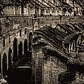 Vintage Roman Colosseum by Donna Proctor