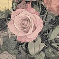 Vintage Romance Rose by Marian Palucci-Lonzetta