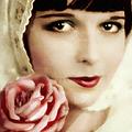 Vintage Rose by Isabella Howard