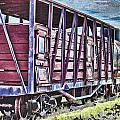 Vintage Steam Locomotive Carriages by Douglas Barnard