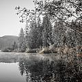 Vintage Sunrise Fairy Lake by Roxy Hurtubise