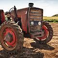 Vintage Tractor by Alfio Finocchiaro