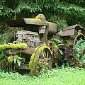 Vintage Tractor by Ian Mcadie
