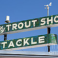 Vintage Trout Shop Sign West Yellowstone by Edward Fielding