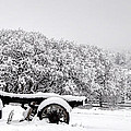 Vintage Wagon In Snow And Fog Filled Valley by Gary Whitton