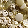 Vintage White Buttons by Carol Groenen
