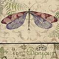 Vintage Wings-paris-f by Jean Plout
