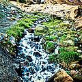 Vintaged Mount Hood Postcard by Athena Mckinzie