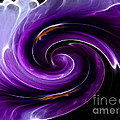 Viola Swirl by Yvonne Johnstone