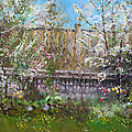 Viola's Apple And Cherry Trees by Ylli Haruni