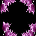 Violet Bells by Diana Angstadt