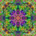 Violet Cosmos Mandala by Susan Bloom