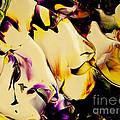 Botanical # 1212 by Antonia Lazaki