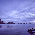 Violet Vista by Jon Glaser