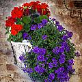 Violets And Geraniums On The Bricks by William Havle