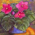 Violets by Kathy Flaherty
