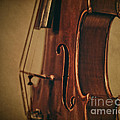 Violin Profile by Emily Kay