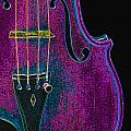 Violin Viola Body Photograph In Digital Color 3265.03 by M K  Miller