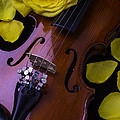 Violin With Yellow Rose by Garry Gay