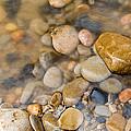 Virgin River Pebbles by Adam Pender