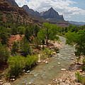 Virgin River Through Zion National Park by Tracy Winter