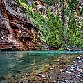 Virgin River Zion National Park Utah by George Buxbaum