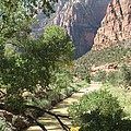 Virgin River Zion Valley by Christiane Schulze Art And Photography
