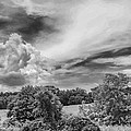 Virginia Clouds by Guy Whiteley