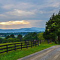 Virginia Road At Sunset by Alex Zorychta