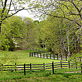 Virginia Spring by Todd Hostetter