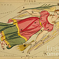 Virgo Constellation Zodiac Sign 1825 by Science Source
